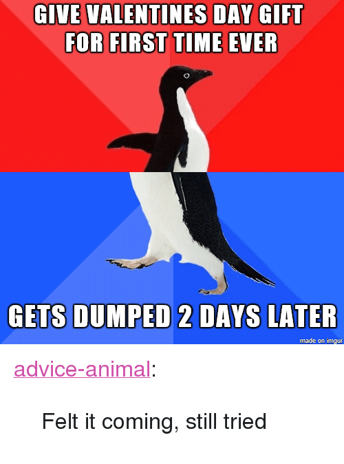 "Advice, Tumblr, and Valentine's Day: GIVE VALENTINES DAY GIFT  FOR FIRST TIME EVER  GETS DUMPED 2DAYS LATER  made on imgur <p><a href=""http://advice-animal.tumblr.com/post/171001104473/felt-it-coming-still-tried"" class=""tumblr_blog"">advice-animal</a>:</p>  <blockquote><p>Felt it coming, still tried</p></blockquote>"