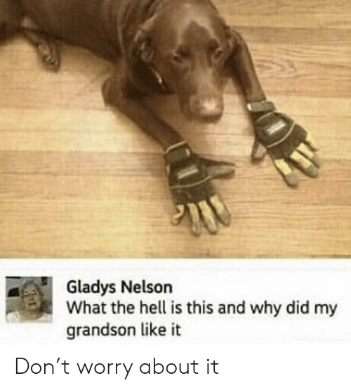 nelson: Gladys Nelson  What the hell is this and why did my  grandson like it Don't worry about it