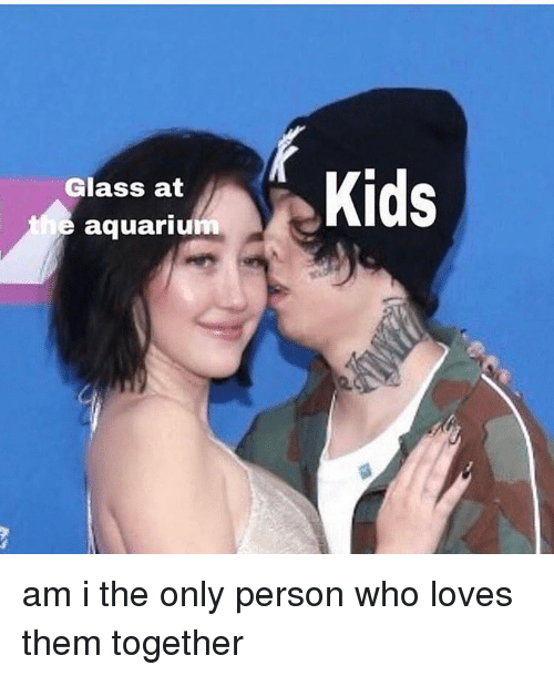 Memes, Aquarium, and 🤖: Glass at  e aquarium am i the only person who loves them together