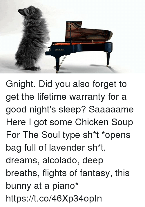 Deep Breaths: Gnight.   Did you also forget to get the lifetime warranty for a good night's sleep? Saaaaame Here I got some Chicken Soup For The Soul type sh*t  *opens bag full of lavender sh*t, dreams, alcolado, deep breaths, flights of fantasy, this bunny at a piano* https://t.co/46Xp34opIn