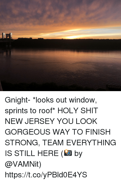 Memes, Shit, and Gorgeous: Gnight- *looks out window, sprints to roof* HOLY SHIT NEW JERSEY YOU LOOK GORGEOUS WAY TO FINISH STRONG, TEAM EVERYTHING IS STILL HERE (📸 by @VAMNit) https://t.co/yPBld0E4YS