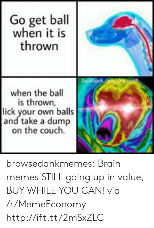 Take A Dump: Go get ball  when it is  thrown  facebookCom/soll  when the ball  is thrown,  lick your own balls  and take a dump  on the couch. browsedankmemes:  Brain memes STILL going up in value, BUY WHILE YOU CAN! via /r/MemeEconomy http://ift.tt/2mSxZLC