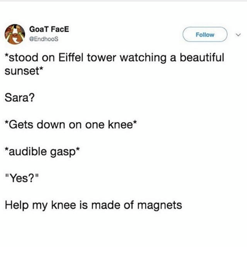 "Audible: GoaT FacE  @EndhooS  Follow  stood on Eiffel tower watching a beautiful  sunset*  Sara?  *Gets down on one knee*  audible gasp*  ""Yes?""  Help my knee is made of magnets"