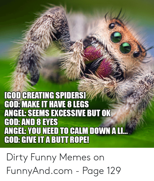 Dirty Funny Memes: [GOD CREATING SPIDERS!  GOD: MAKE IT HAVE 8 LEGS  ANGEL: SEEMS EXCESSIVE BUT OK  GOD: AND 8 EYES  YOU NEED TO CALM  ANGEL: YOU NEED TO CALM DOWN A LI..  GOD: GIVE IT A BUTT ROPE! Dirty Funny Memes on FunnyAnd.com - Page 129