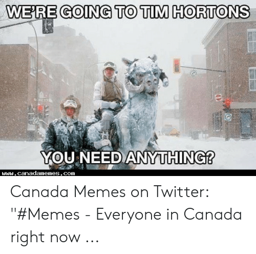 """Canada Memes: GOING TO TIM HORTONS  WE'RE  YOU NEEDANYTHING? Canada Memes on Twitter: """"#Memes - Everyone in Canada right now ..."""