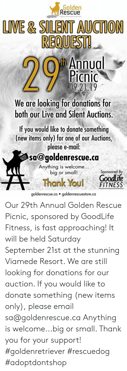 Memes, Thank You, and Email: Golden  Rescue  About Secorid Chiance  LIVE& SILENT AUCTION  REQUEST!  yh Annual  Picnic  0921 19  We are looking for donations for  both our Live and Silent Auctions.  If you would like to donate something  (new items only) for one of our Auctions,  please e-mail:  sa@goldenrescue.ca  eacue  Anything is welcome..  big or small!  Sponsored By  GoodLife  FITNESS  Thank You!  goldenrescue.ca goldenrescuestore.ca Our 29th Annual Golden Rescue Picnic, sponsored by GoodLife Fitness, is fast approaching! It will be held Saturday September 21st at the stunning Viamede Resort. We are still looking for donations for our auction. If you would like to donate something (new items only), please email sa@goldenrescue.ca Anything is welcome...big or small. Thank you for your support!  #goldenretriever #rescuedog #adoptdontshop