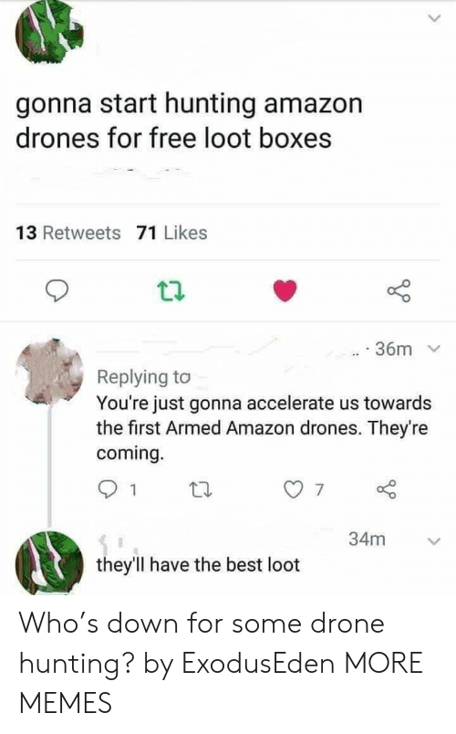 Amazon, Dank, and Drone: gonna start hunting amazon  drones for free loot boxes  13 Retweets 71 Likes  36m  Replying to  You're just gonna accelerate us towards  the first Armed Amazon drones. They're  coming.  34m  they'll have the best loot Who's down for some drone hunting? by ExodusEden MORE MEMES