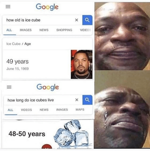 Google, Ice Cube, and News: Gooale  how old is ice cube  ALL IMAGES NEWS SHOPPING VIDEOS  Ice Cube /Age  49 years  June 15, 1969  Google  how long do ice cubes live  ALL VIDEOSNEWS IMAGES MAPS  48-50 years