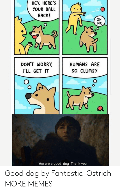 ostrich: Good dog by Fantastic_Ostrich MORE MEMES