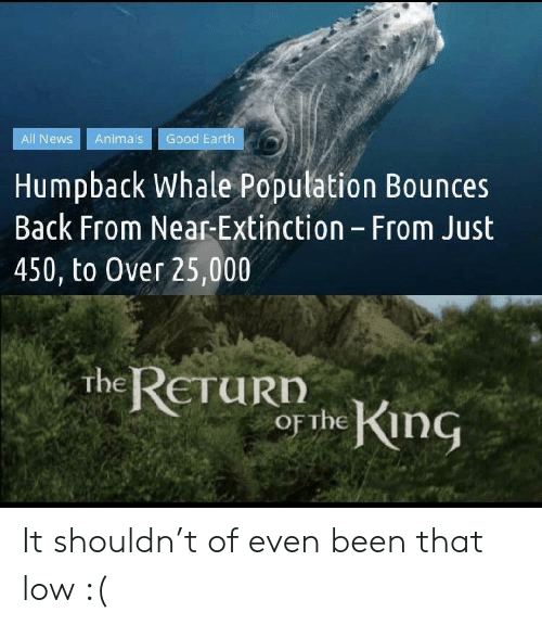 Animals, News, and Earth: Good Earth  All News  Animals  Humpback Whale Population Bounces  Back From Near-Extinction - From Just  450, to Over 25,000  the RETURD  or the King It shouldn't of even been that low :(