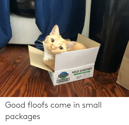 packages: Good floofs come in small packages