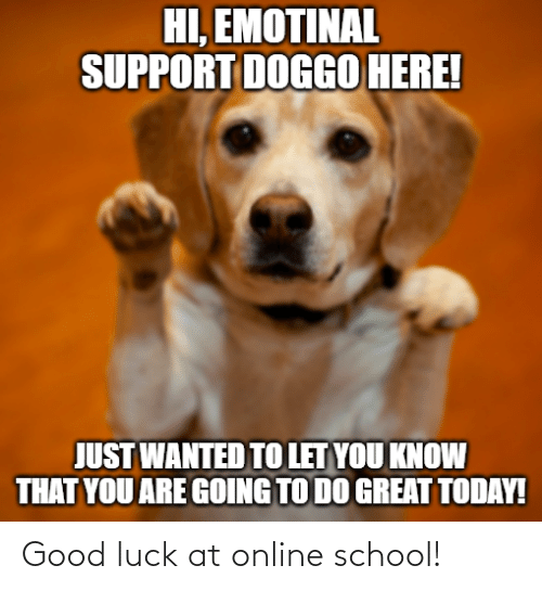 Luck: Good luck at online school!