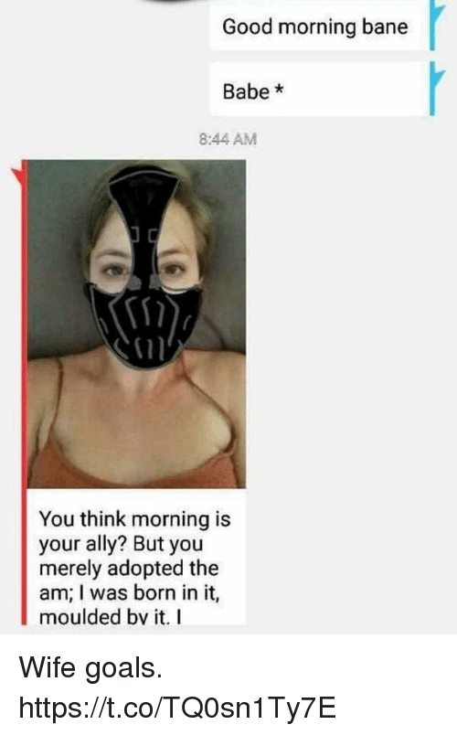 Bane, Funny, and Goals: Good morning bane  Babe*  8:44 AM  i1n  You think morning is  your ally? But you  merely adopted the  am; I was born in it,  moulded bv it. I Wife goals. https://t.co/TQ0sn1Ty7E