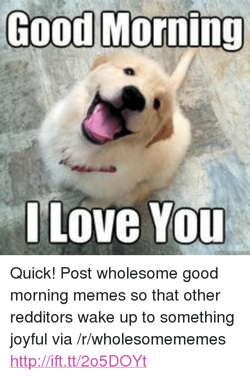 "Joyful: Good Morning  Love You <p>Quick! Post wholesome good morning memes so that other redditors wake up to something joyful via /r/wholesomememes <a href=""http://ift.tt/2o5DOYt"">http://ift.tt/2o5DOYt</a></p>"