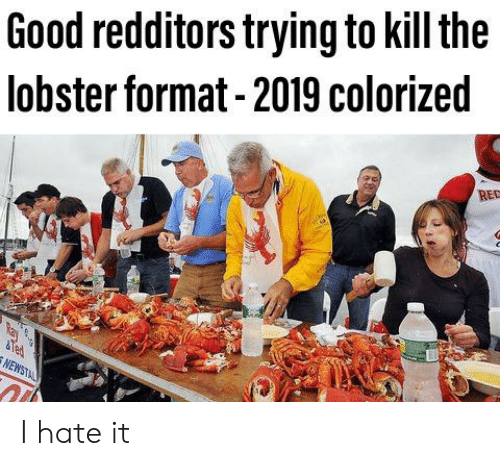 Ted, Good, and Dank Memes: Good redditors trying to kill the  lobster format -2019 colorized  RED  Ted I hate it