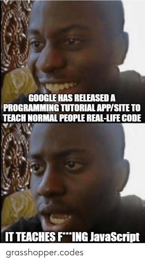 tutorial: GOOGLE HAS RELEASED A  PROGRAMMING TUTORIAL APP/SITE TO  TEACH NORMAL PEOPLE REAL-LIFE CODE  IT TEACHES FING JavaScript grasshopper.codes