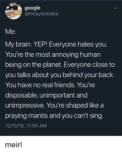 Most Annoying: google  @hiitaylorblake  Me:  My brain: YEP! Everyone hates you  You're the most annoying human  being on the planet. Everyone close to  you talks about you behind your back.  You have no real friends. You're  disposable, unimportant and  unimpressive. You're shaped like a  praying mantis and you can't sing  12/15/18, 11:55 AM meirl
