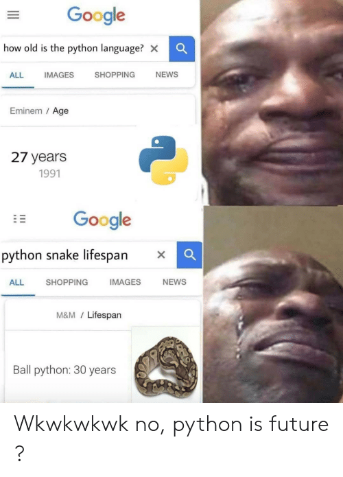 Eminem: Google  how old is the python language? x  SHOPPING  NEWS  ALL  IMAGES  Eminem / Age  27 years  1991  Google  python snake lifespan  IMAGES  NEWS  SHOPPING  ALL  M&M/Lifespan  Ball python: 30 years Wkwkwkwk no, python is future ?