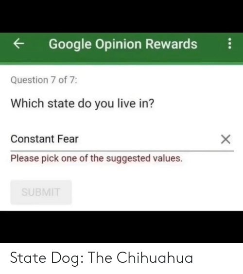 values: Google Opinion Rewardsi  Question 7 of 7:  Which state do you live in?  Constant Fear  Please pick one of the suggested values.  SUBMIT State Dog: The Chihuahua