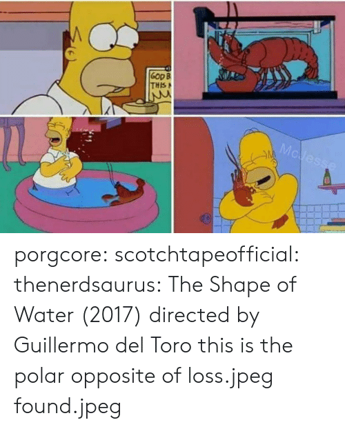 Guillermo Del Toro: Gop B  THIS porgcore: scotchtapeofficial:  thenerdsaurus: The Shape of Water (2017) directed by Guillermo del Toro   this is the polar opposite of loss.jpeg   found.jpeg