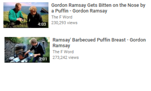 puffin: Gordon Ramsay Gets Bitten on the Nose by  a Puffin - Gordon Ramsay  The F Word  230,293 views  4:03   Ramsay Barbecued Puffin Breast - Gordon  Ramsay  The F Word  01273,242 views