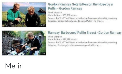 puffin: Gordon Ramsay Gets Bitten on the Nose by a  Puffin Gordon Ramsay  The F Word a  Hace 5 años 350,868 vistas  Season 4 of 6 of The F Word with Gordon Ramsay and celebrity cooking  brigades. Gordon is finally able to catch Puffin-he ends  4:03  Ramsay Barbecued Puffin Breast Gordon Ramsay  The F Word 2  Hace 5 años 371,198 vistas  Season 4 of 6 of The F Word with Gordon Ramsay and celebrity cooking  brigades. Gordon gets alfresco cooking and whips up  2:01 Me irl