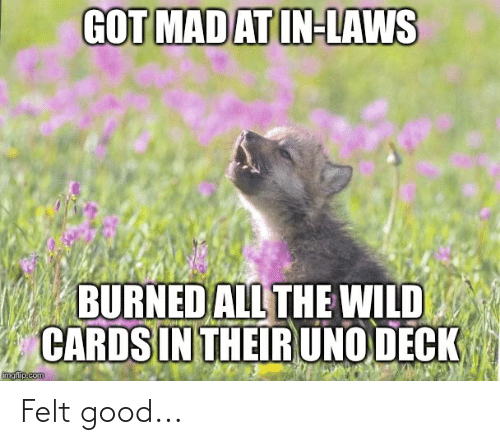 Imgflip Com: GOT MAD AT IN-LAWS  BURNED ALL THE WILD  CARDS IN THEIR UNO DECK  imgflip.com Felt good...