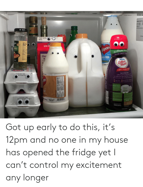 the fridge: Got up early to do this, it's 12pm and no one in my house has opened the fridge yet I can't control my excitement any longer
