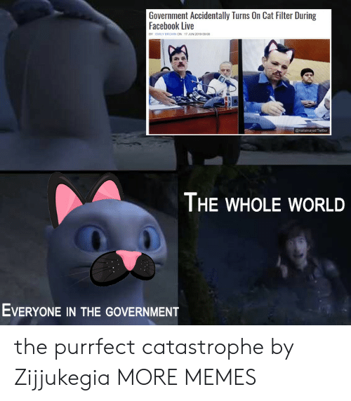 Dank, Facebook, and Memes: Government Accidentally Turns On Cat Filter During  Facebook Live  BY EMILY BROWN ON 17 JUN 2019 0908  @nailainayatTwiter  THE WHOLE WORLD  EVERYONE IN THE GOVERNMENT the purrfect catastrophe by Zijjukegia MORE MEMES