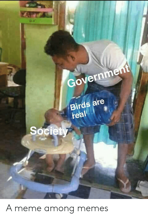 Meme, Memes, and Birds: Government  Birds are  real  Society A meme among memes