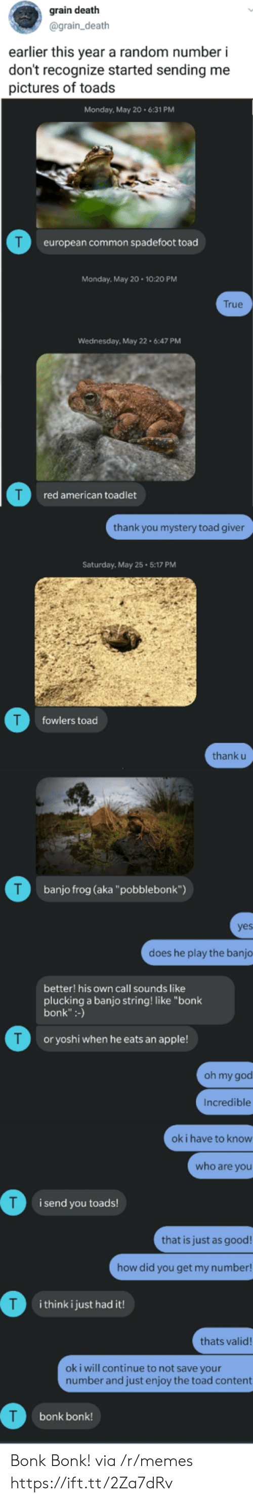 "Thank U: grain death  @grain_death  earlier this year a random number i  don't recognize started sending me  pictures of toads  Monday, May 20.6:31 PM  T  european common spadefoot toad  Monday, May 20 10:20 PM  True  Wednesday, May 22 6:47 PM  red american toadlet  thank you mystery toad giver  Saturday, May 25 5:17 PM  T  fowlers toad  thank u  T  banjo frog (aka""pobblebonk"")  yes  does he play the banjo  better! his own call sounds like  plucking a banjo string! like ""bonk  bonk"":-)  T  or yoshi when he eats an apple!  oh my god  Incredible  ok i have to know  who are you  i send you toads!  that is just as good!  how did you get my number!  T  i think i just had it!  thats valid!  oki will continue to not save your  number and just enjoy the toad content  bonk bonk! Bonk Bonk! via /r/memes https://ift.tt/2Za7dRv"
