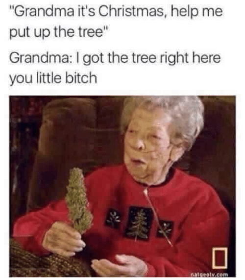 "Bitch, Christmas, and Grandma: ""Grandma it's Christmas, help me  put up the tree""  Grandma: I got the tree right here  you little bitch  natgeotv.comn"