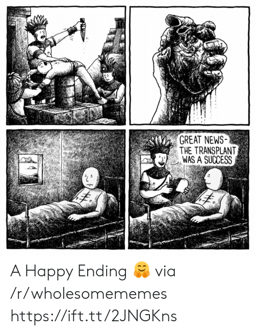 News, Happy, and Success: GREAT NEWS  THE TRANSPLANT  WAS A SUCCESS A Happy Ending 🤗 via /r/wholesomememes https://ift.tt/2JNGKns