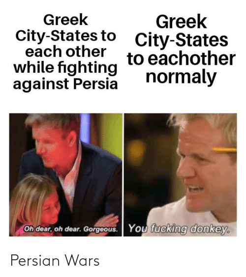 Gorgeous: Greek  City-States to  each other  while fighting  against Persia  Greek  City-States  to eachother  normaly  Oh dear, oh dear. Gorgeous.  You fucking donkey. Persian Wars