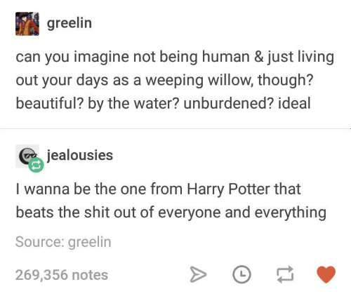 Beautiful, Harry Potter, and Beats: greelin  can you imagine not being human & just living  out your days as a weeping willow, though?  beautiful? by the water? unburdened? ideal  jealousies  I wanna be the one from Harry Potter that  beats the shit out of everyone and everything  Source: greelin  269,356 notes
