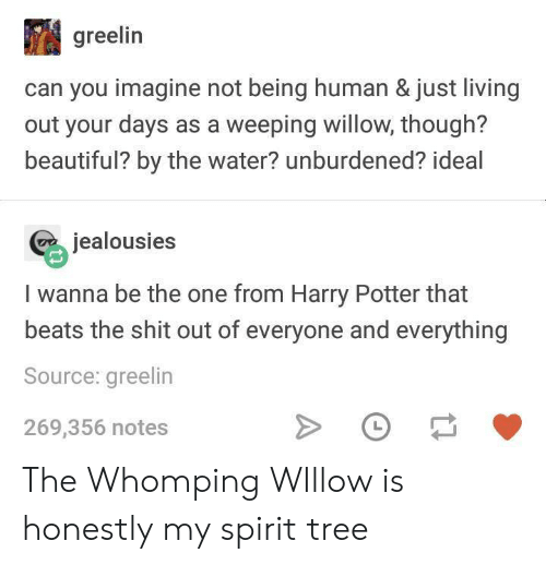willow: greelin  can you imagine not being human & just living  out your days as a weeping willow, though?  beautiful? by the water? unburdened? ideal  jealousies  I wanna be the one from Harry Potter that  beats the shit out of everyone and everything  Source: greelin  269,356 notes The Whomping WIllow is honestly my spirit tree
