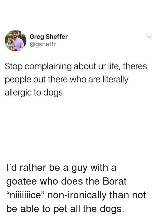 """Borat: Greg Sheffer  @gsheffr  Stop complaining about ur life, theres  people out there who are literally  allergic to dogs I'd rather be a guy with a goatee who does the Borat """"niiiiiiice"""" non-ironically than not be able to pet all the dogs."""