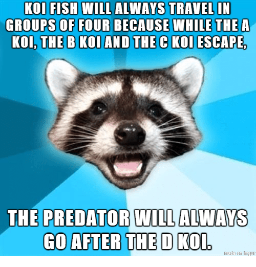 Predator, Kol, and Will: GROUPS OF FOUR BECAUSE WHILE THEA  KOI, THE B KOIAND THE C KOL ESCAPE  THE PREDATOR WILL ALWAYS  GO AFTER THE D KO  D.