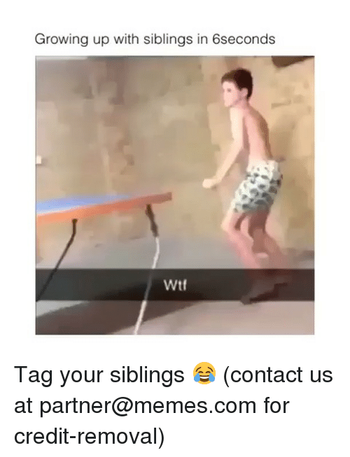 Growing Up, Memes, and Wtf: Growing up with siblings in 6seconds  Wtf Tag your siblings 😂 (contact us at partner@memes.com for credit-removal)