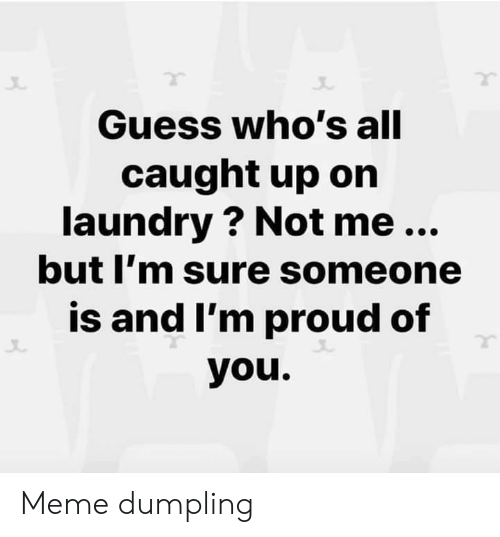 Laundry, Meme, and Guess: Guess who's all  caught up on  laundry ? Not me...  but I'm sure someone  is and I'm proud of  you. Meme dumpling