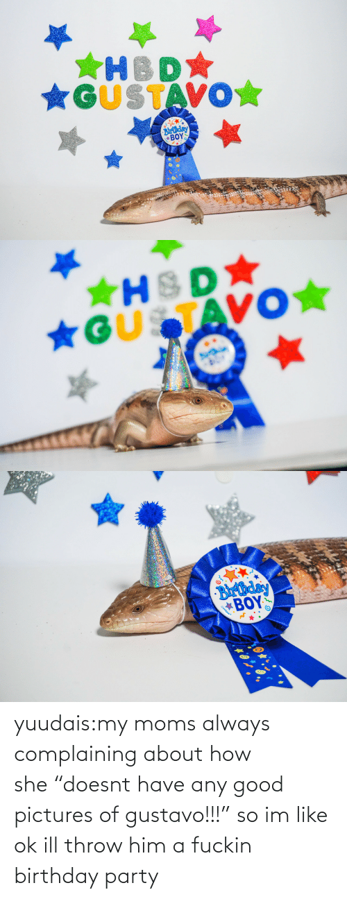 "Moms: *GUSTAVO☆  Blrthday  ΒΟΥΣ   ★HSD  *GUSTAVO★   Barthday  BOY  Gunique yuudais:my moms always complaining about how she ""doesnt have any good pictures of gustavo!!!"" so im like ok ill throw him a fuckin birthday party"