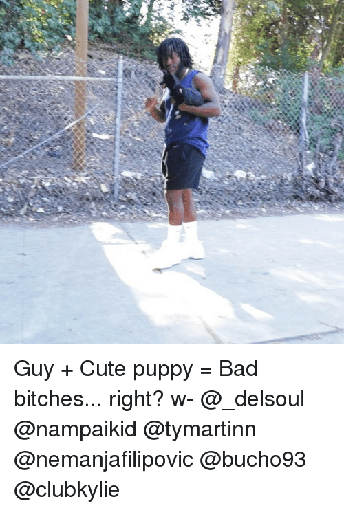 Bad, Cute, and Memes: Guy + Cute puppy = Bad bitches... right? w- @_delsoul @nampaikid @tymartinn @nemanjafilipovic @bucho93 @clubkylie