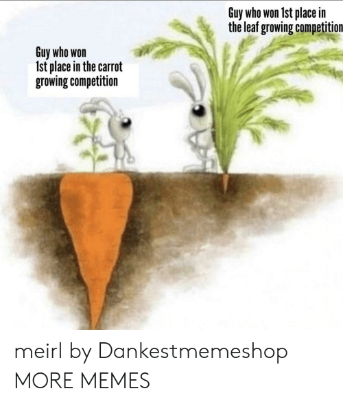 carrot: Guy who won 1st place in  the leaf growing competition  Guy who won  Ist place in the carrot  growing competition meirl by Dankestmemeshop MORE MEMES