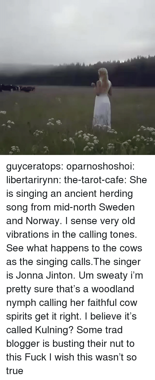 woodland: guyceratops:  oparnoshoshoi:  libertarirynn:  the-tarot-cafe:    She is singing an ancient herding song from mid-north Sweden and Norway. I sense very old vibrations in the calling tones. See what happens to the cows as the singing calls.The singer is Jonna Jinton.    Um sweaty i'm pretty sure that's a woodland nymph calling her faithful cow spirits get it right.   I believe it's called Kulning?  Some trad blogger is busting their nut to this  Fuck I wish this wasn't so true