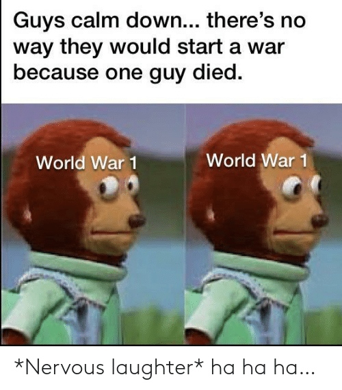 Died: Guys calm down... there's no  way they would start a war  because one guy died.  World War 1  World War 1 *Nervous laughter* ha ha ha…