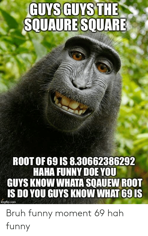 25 Best Memes About Square Root Of 69 Is Square Root Of 69 Is Memes