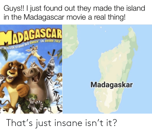 als: Guys!! I just found out they made the island  in the Madagascar movie a real thing!  IT DEZELFDE STUDIO ALS SHREK EN SHARK TALE  Madagaskar That's just insane isn't it?