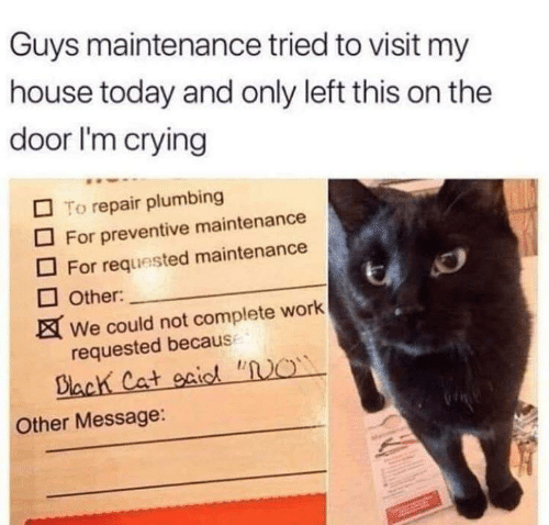 """Crying, Memes, and My House: Guys maintenance tried to visit my  house today and only left this on the  door I'm crying  To repair plumbing  For preventive maintenance  For requested maintenance  Other:  We could not complete work  requested becaus  Biach Cat gaic """"O  Other Message:"""