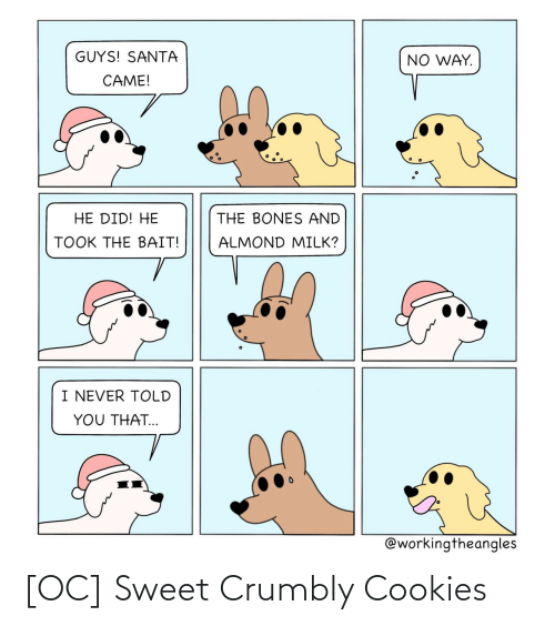 Bones: GUYS! SANTA  NO WAY.  CAME!  HE DID! HE  THE BONES AND  TOOK THE BAIT!  ALMOND MILK?  I NEVER TOLD  YOU THAT...  @workingtheangles [OC] Sweet Crumbly Cookies