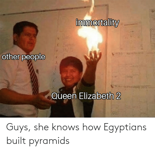 she knows: Guys, she knows how Egyptians built pyramids